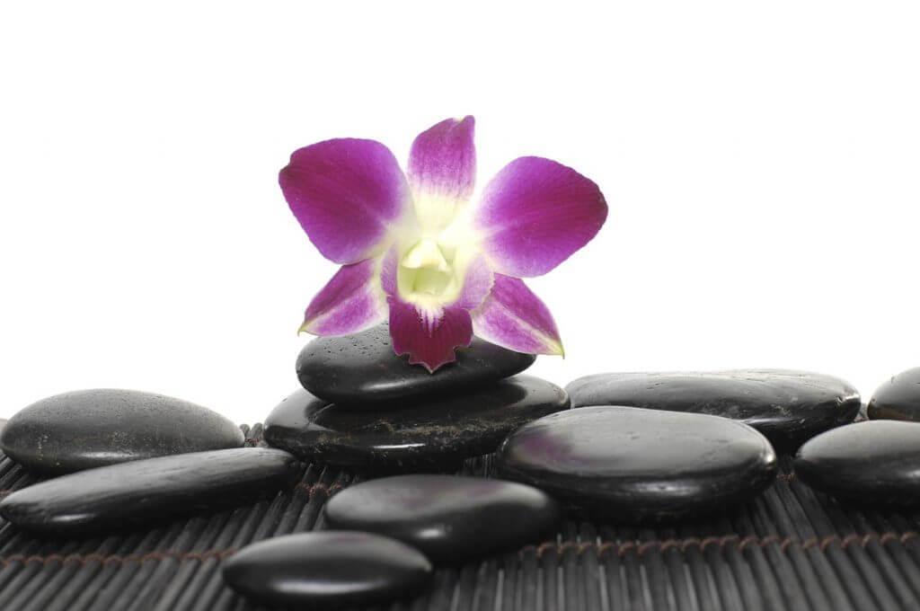 Flower and Balance